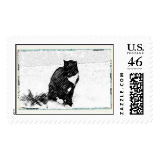 Tuxedo Cat in White Postage Stamps