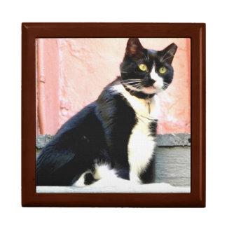 Tuxedo Cat Jewelry Box