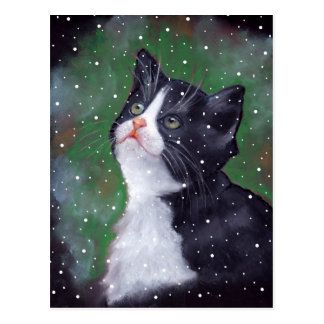 Tuxedo Cat Looking Up At Snowflakes, Painting Postcard