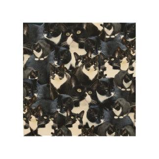 Tuxedo Cat Madness Photo Art Wood Print