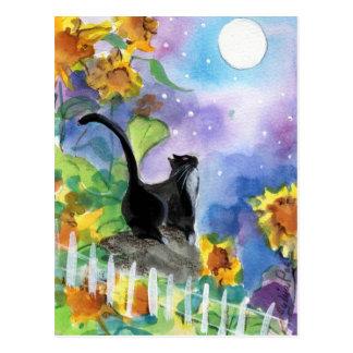 Tuxedo Cat Moon in Sunflowers Postcard