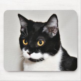 Tuxedo cat mouse pad
