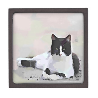 Tuxedo Cat Painting Keepsake Box