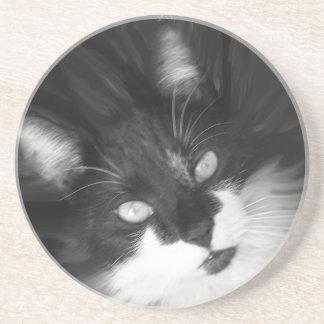 Tuxedo Cat Round Coasters