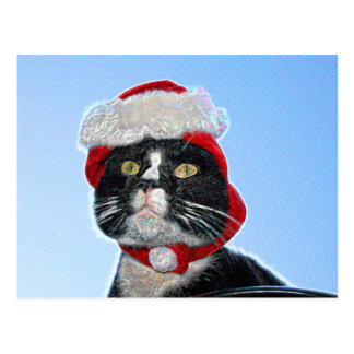 tuxedo cat wearing santa hat sparkle postcard