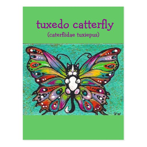 Tuxedo Catterfly Cat/Butterfly Whimsical Fantasy! Post Card
