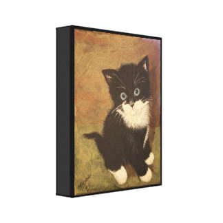Tuxedo Kitten Stretched Canvas Prints