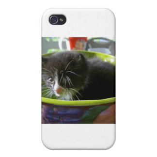 Tuxedo Kitten Cat Cute Baby Kitty with Whiskers iPhone 4/4S Case