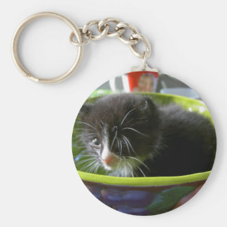 Tuxedo Kitten Cat Cute Baby Kitty with Whiskers Keychains