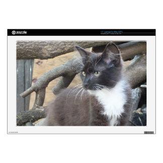 """Tuxedo Kitten Decals For 17"""" Laptops"""