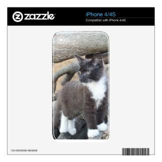 Tuxedo Kitten iPhone 4 Decals