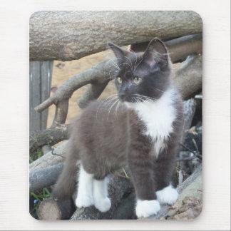 Tuxedo Kitten Mouse Pad