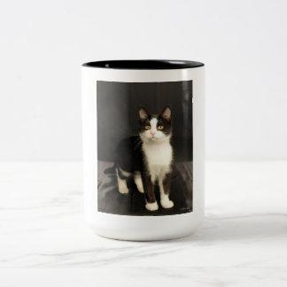 Tuxedo Kitten Mug