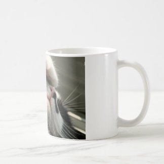 Tuxedo Kitty Has A Sick Headache Mug
