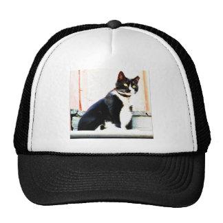 Tuxedo Kitty Trucker Hat