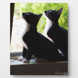 Tuxedo Twins Plaque