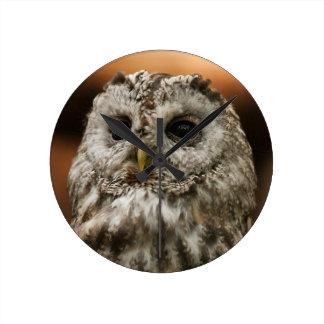Twany Owl Round Clocks