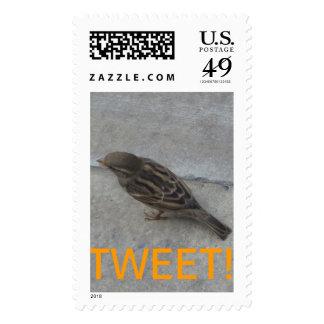 TWEET! Bird Large Postage Stamp