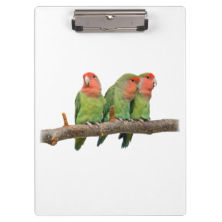 Tweet Trio Clipboard