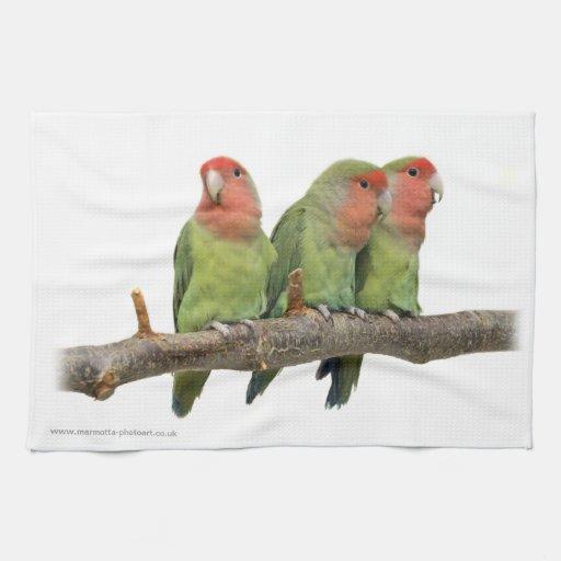 Tweet Trio Kitchen Towel