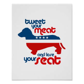 Tweet your meat and lose your seat - posters