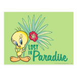 """Tweety """"Lost In Paradise"""" Post Cards"""