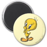 Tweety Lovely 2 Inch Round Magnet