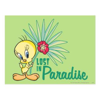 """Tweety """"perdido en paraíso """" postal"""