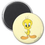 Tweety Proud 2 Inch Round Magnet