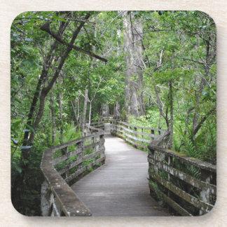 Twelfth Path Coaster