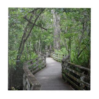 Twelfth Path Tile