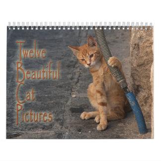 Twelve Beautiful Cats Pictures Calendar
