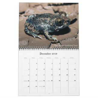 2019 Frog Photo Calendar for sale