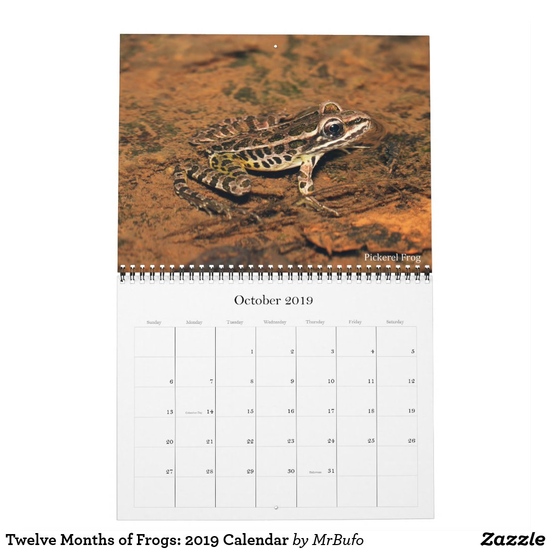 2019 Frog Photo Calendar for sale