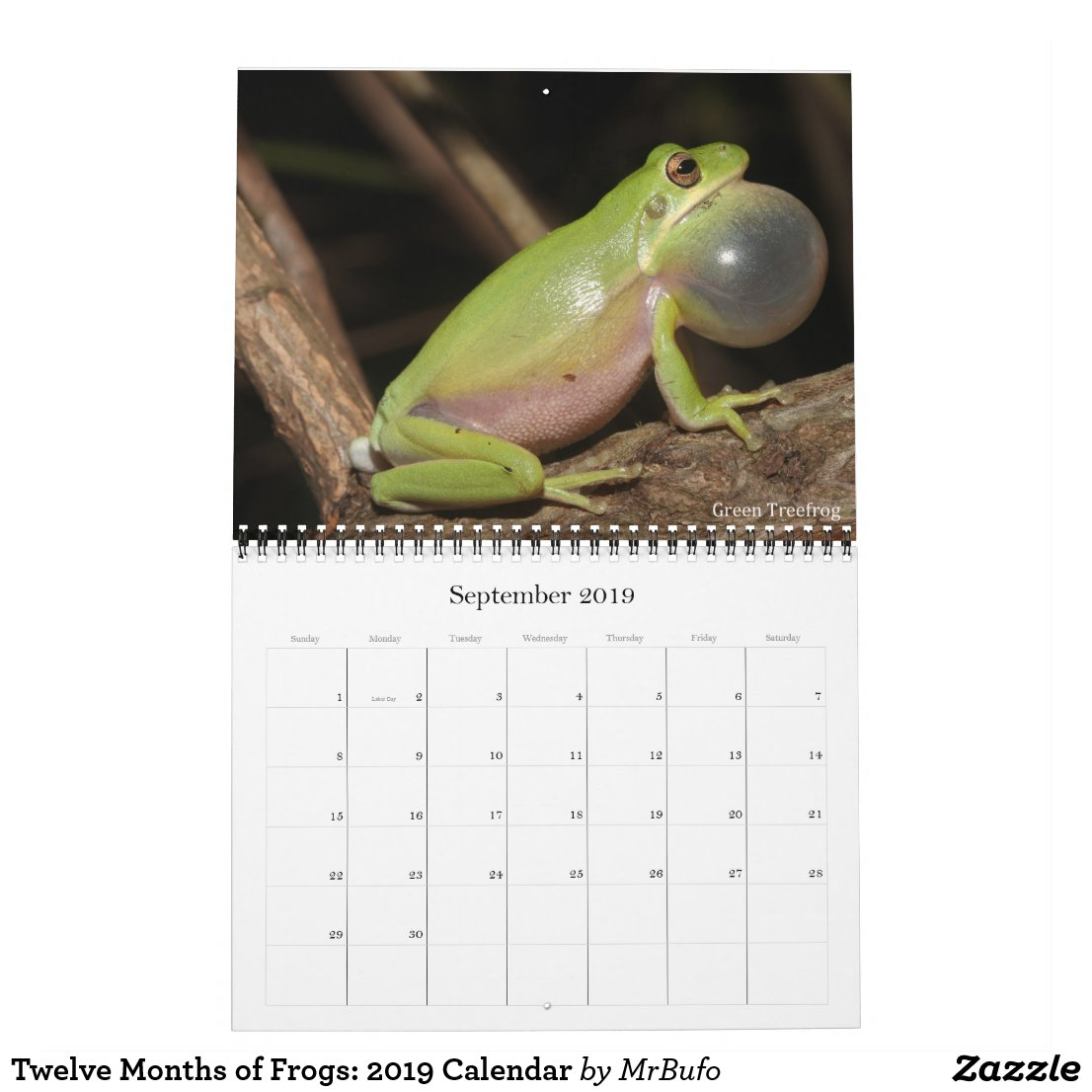 2019 Frog Photo Calendar for sale; Green Treefrog