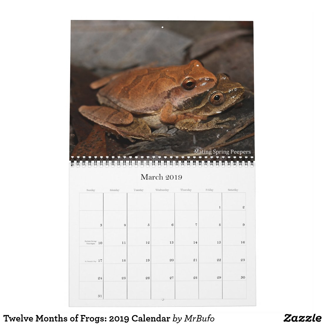 2019 Frog Photo Calendar for sale; Amplexing Spring Peepers