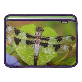 Twelve-spotted Skimmer MacBook Air Sleeves