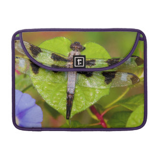Twelve-spotted Skimmer Sleeve For MacBooks