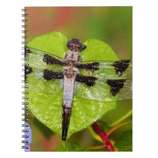 Twelve-spotted Skimmer Spiral Notebook