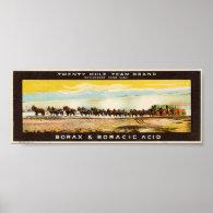 Twenty Mule Team Borax Posters