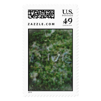 Twig Love Stamps
