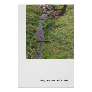 Twig Over Worried Waters Poster