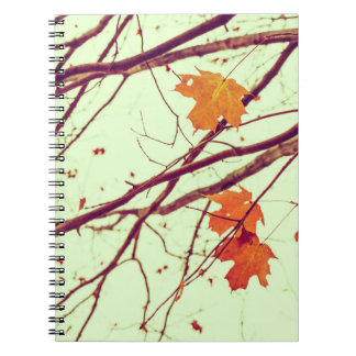 Twigs in Autumn Notebook