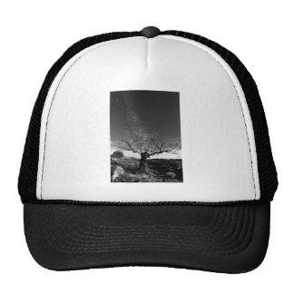 Twilight CoPy Hat