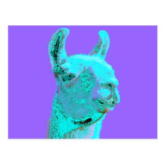 Twilight Llama, turqoise llama, llama head Post Card
