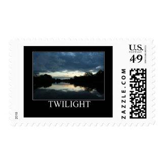 Twilight on the Amazon Postage Stamp