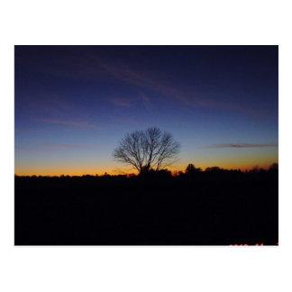 Twilight Peace Post Card