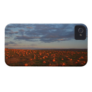 Twilight Pumpkin Patch iPhone 4 Cover