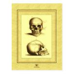 Twin Antique Skulls Post Cards