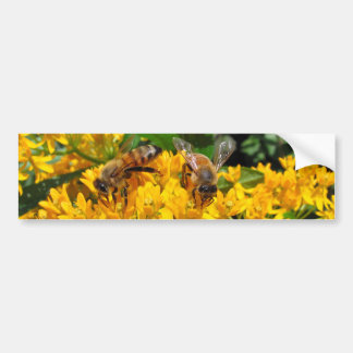 Twin Bees ~ B'Sticker Bumper Sticker